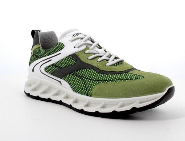 Primigi Sneaker Oliv - Bild 1
